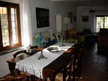 House in Montescudaio
