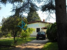 Family house in Umag